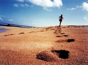 The Sand Runner